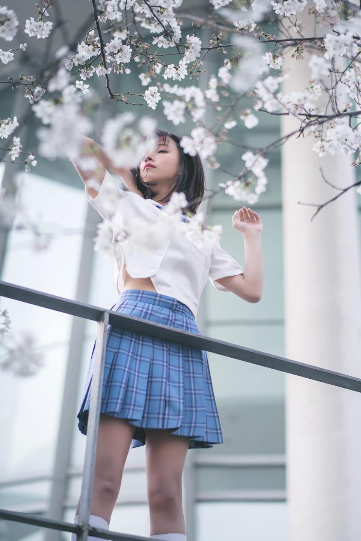 樱花树下,你恋爱了吗?